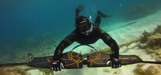 divewing