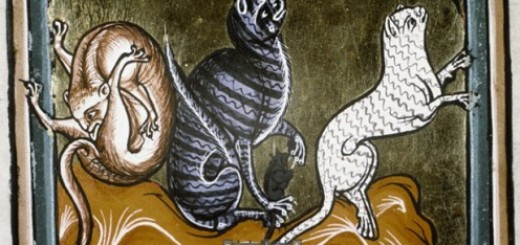 cats-from-the-Ashmole-Bestiary-496x400