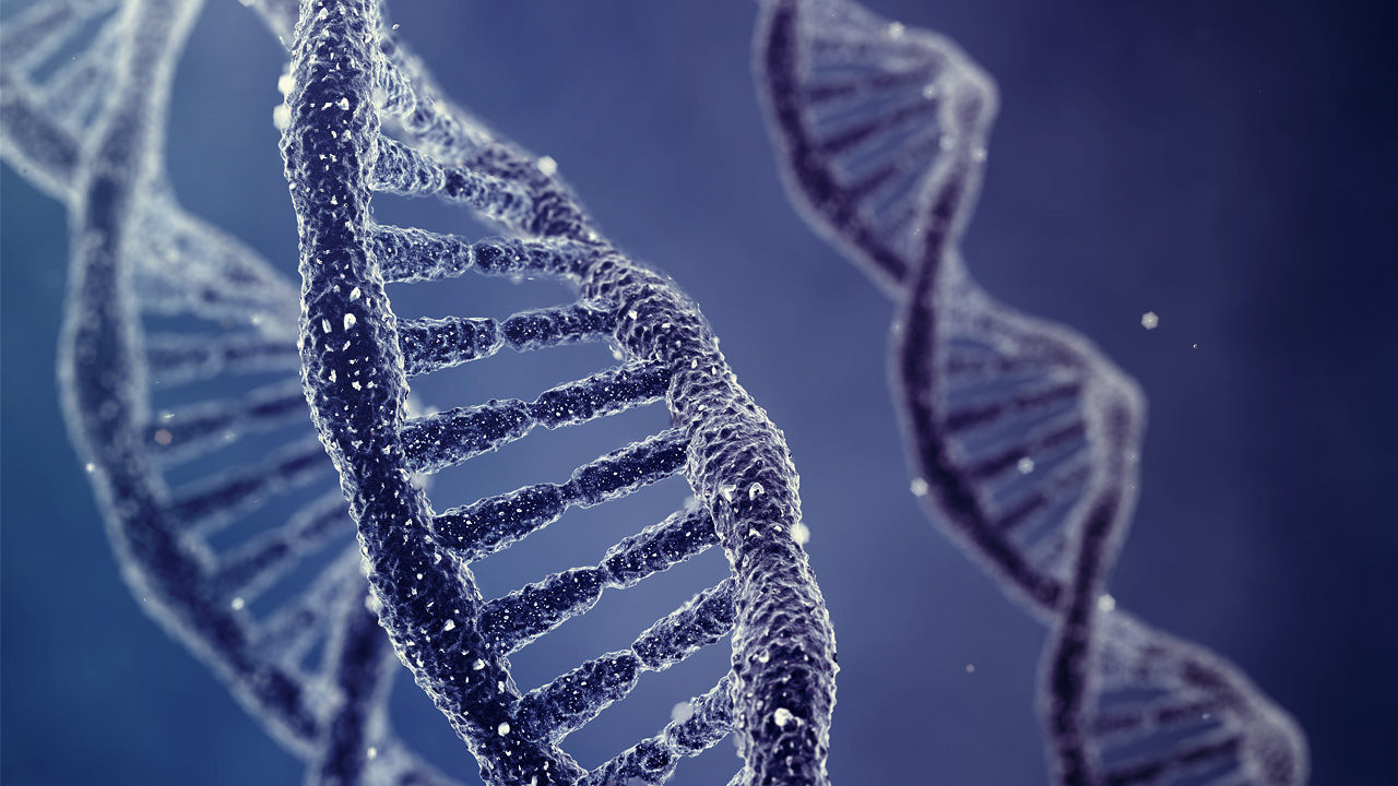 3019370-poster-1280-dna